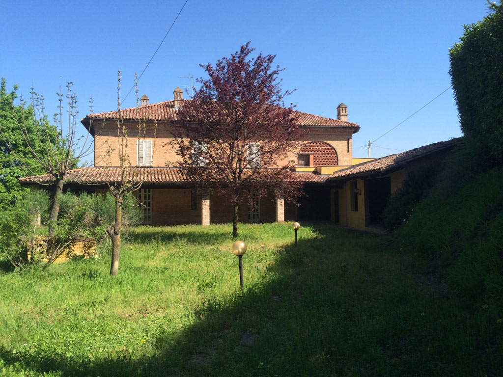 Near Nizza Monferrato 6