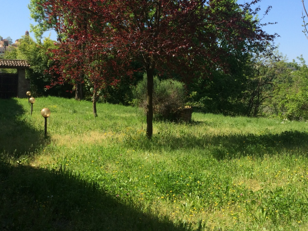 Property: Near Nizza Monferrato 6. Image 3
