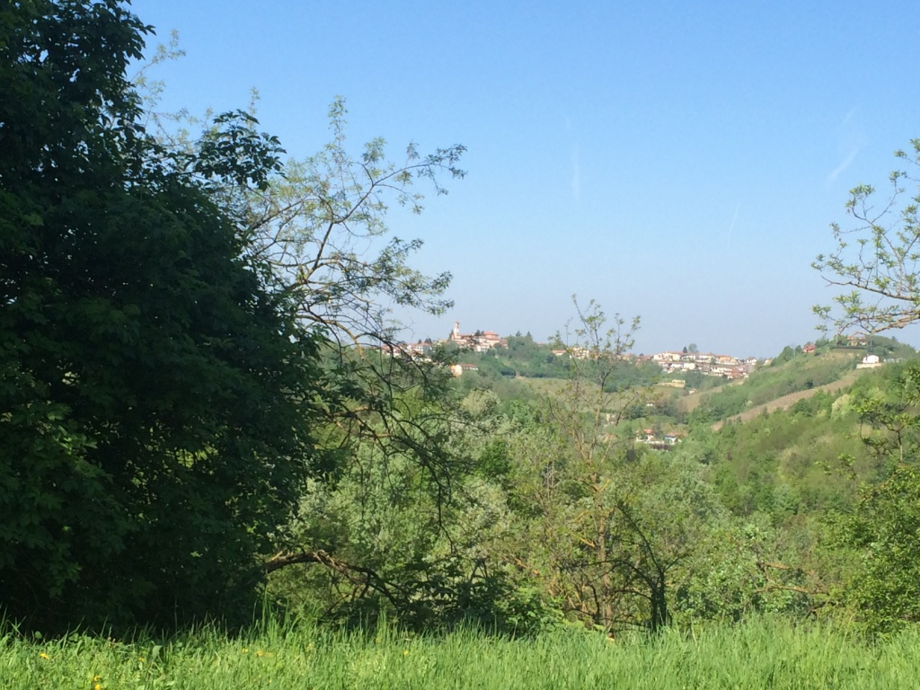 Property: Near Nizza Monferrato 6. Image 5